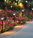 empress-garden-lights-flowers