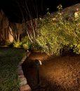 radiance-landscape-lights-shrubs