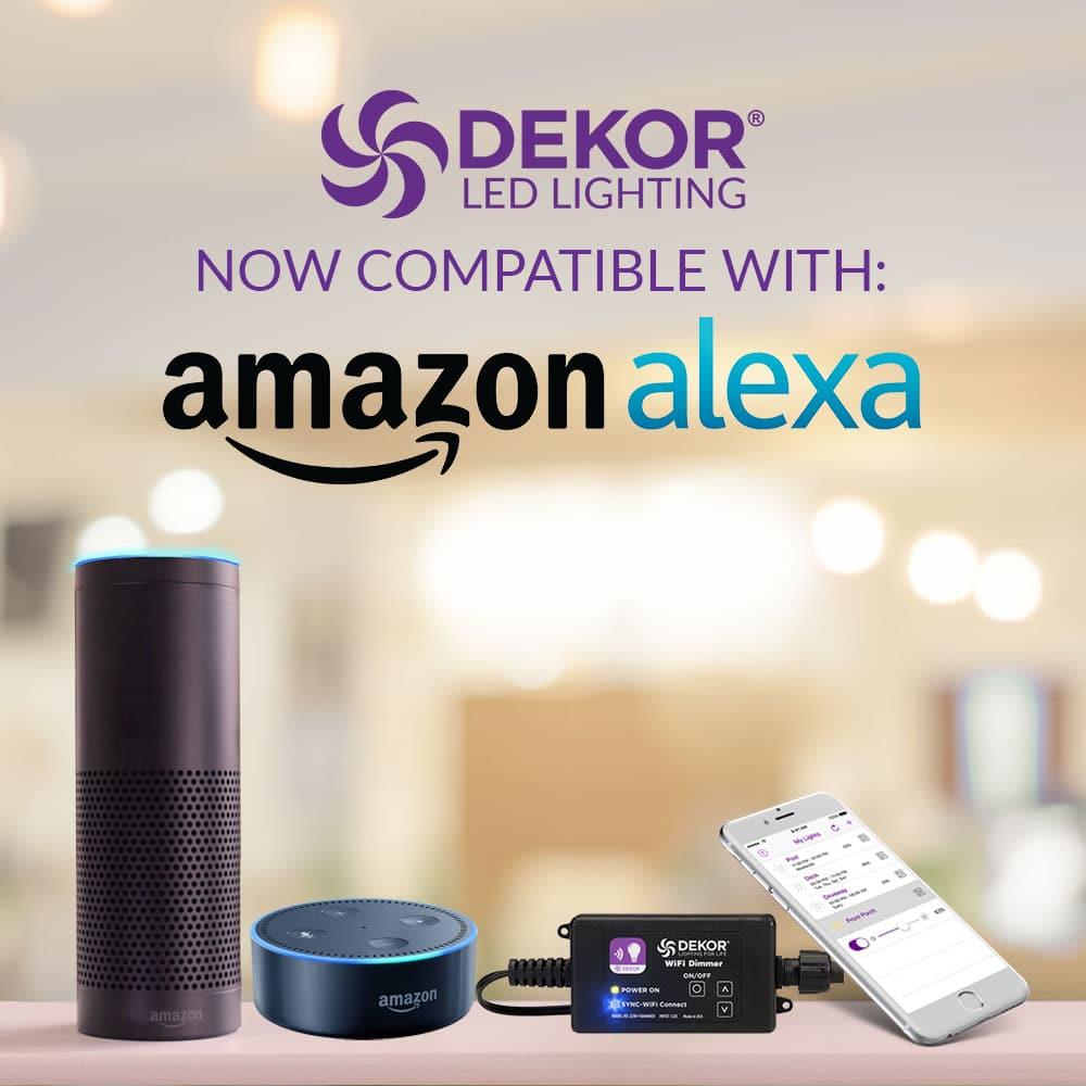 EZ WIFI Controller & WIFI Remote App - DEKOR® Lighting