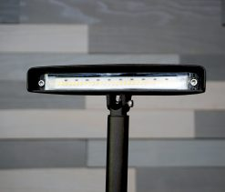 Sidewalk Pathway Light Multi-Function