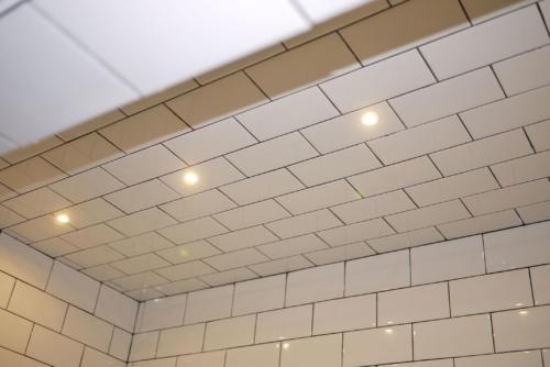 DekDots in Shower Stalljpg