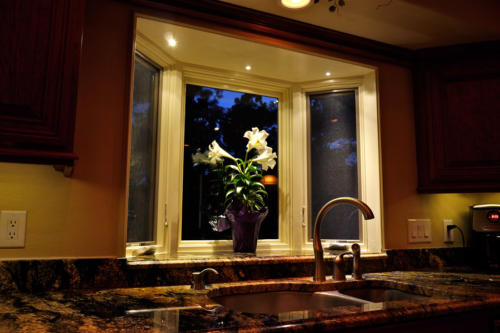 Use our LED Down lights to accent a bay window